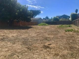 811 Pelton Ave, Santa Cruz, CA 95060 (#ML81728039) :: Strock Real Estate