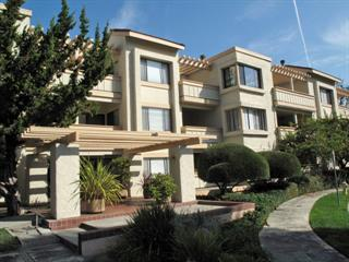 440 Cesano Ct 311, Palo Alto, CA 94306 (#ML81731081) :: Maxreal Cupertino