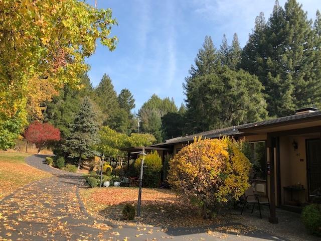 140 Kings Hwy 3-17, Boulder Creek, CA 95006 (#ML81731329) :: Perisson Real Estate, Inc.