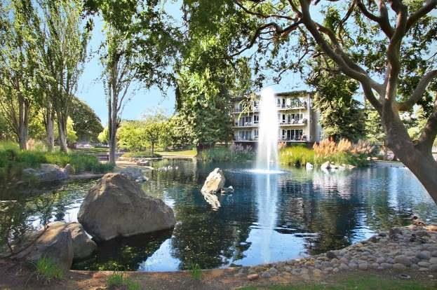 816 N Delaware St 210, San Mateo, CA 94401 (#ML81732480) :: Maxreal Cupertino