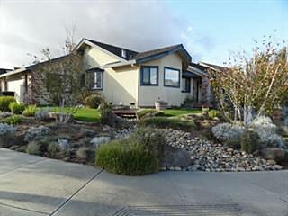 1950 Calistoga Dr, Hollister, CA 95023 (#ML81732684) :: The Goss Real Estate Group, Keller Williams Bay Area Estates