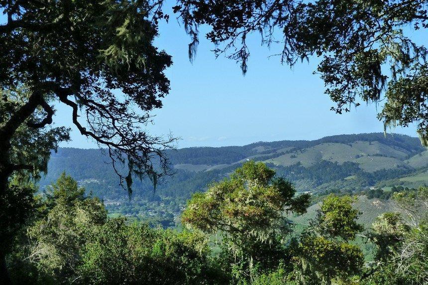 6 Rancho San Carlos Rd - Photo 1