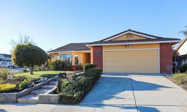 3501 Pleasant Row Ct, San Jose, CA 95148 (#ML81737651) :: Julie Davis Sells Homes