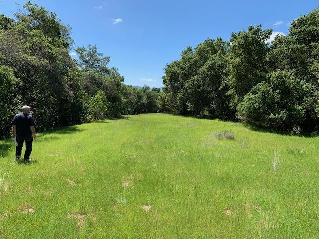 0 Poli Road, Morgan Hill, CA 95037 (#ML81748401) :: Julie Davis Sells Homes
