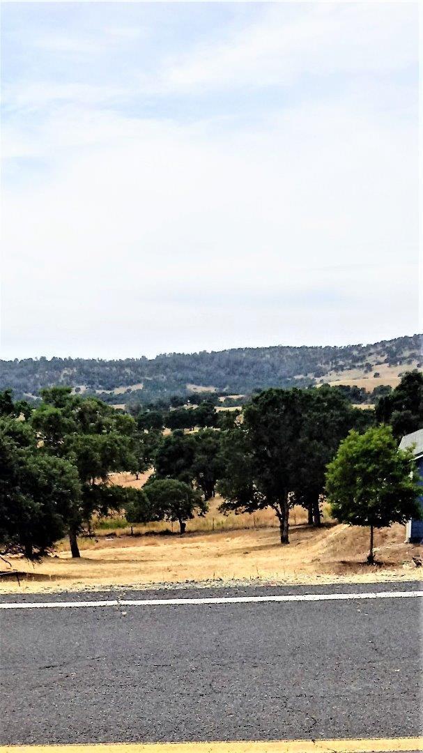 4978 Little John Rd, Copperopolis, CA 95228 (#ML81752068) :: Strock Real Estate