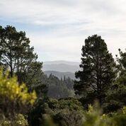 34 Tehama, Carmel Valley, CA 93923 (#ML81752815) :: The Gilmartin Group