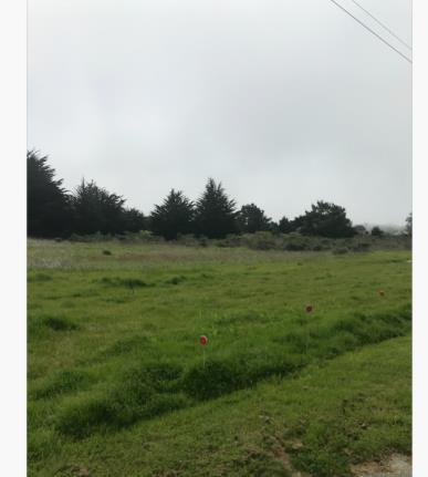 0 Dolores Ave, Half Moon Bay, CA 94019 (#ML81755973) :: Intero Real Estate
