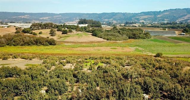 177 Minto, Watsonville, CA 95076 (#ML81756377) :: Strock Real Estate