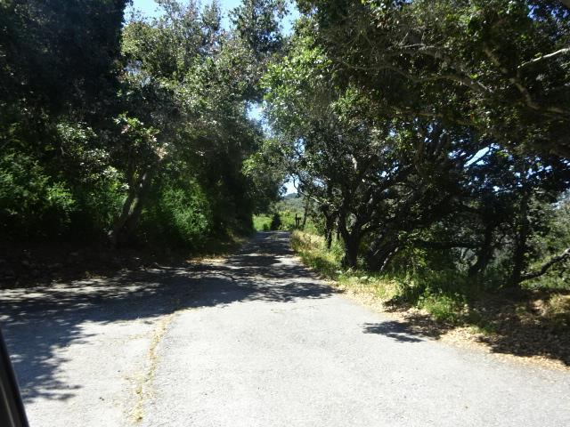 0 Southbank Rd, Carmel Valley, CA 93924 (#ML81758175) :: Strock Real Estate