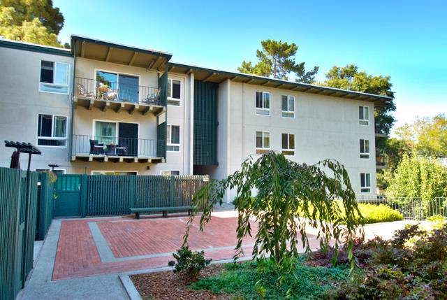 816 N Delaware St 310, San Mateo, CA 94401 (#ML81768400) :: RE/MAX Real Estate Services