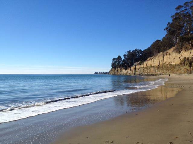 870 Park Ave 217, Capitola, CA 95010 (#ML81771303) :: Maxreal Cupertino
