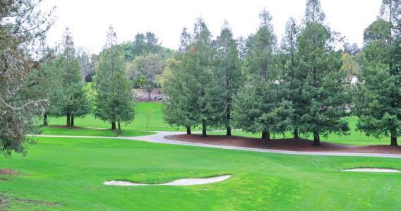 700 Sand Hill Cir, Menlo Park, CA 94025 (#ML81772336) :: The Sean Cooper Real Estate Group