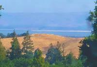 2991 Alexis Dr, Palo Alto, CA 94304 (#ML81776833) :: The Sean Cooper Real Estate Group