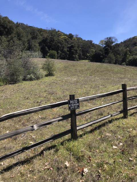 0 Tassajara Rd, Carmel Valley, CA 93924 (#ML81777623) :: Strock Real Estate