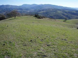 00 Coalinga/Old Hernandez Rd, Paicines, CA 95043 (#ML81779585) :: Schneider Estates