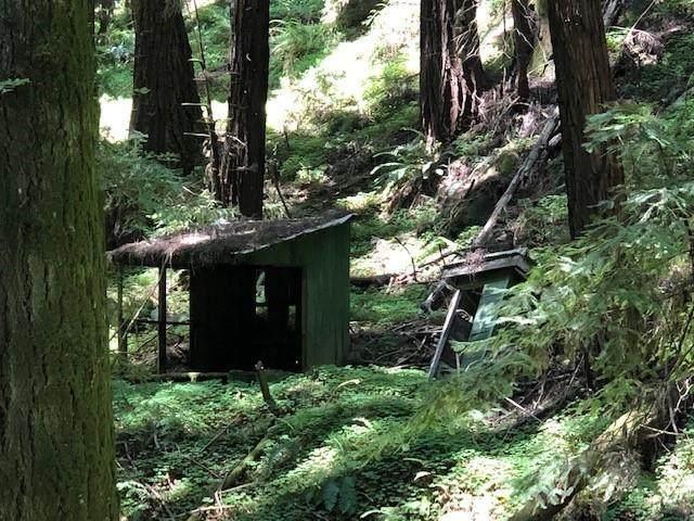 0 Love Creek, Ben Lomond, CA 95005 (#ML81783751) :: Robert Balina | Synergize Realty