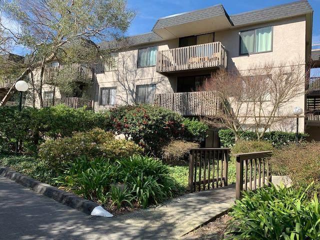 7336 Shelter Creek Ln 7336, San Bruno, CA 94066 (#ML81784074) :: Real Estate Experts