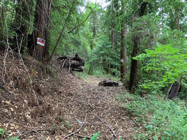 Address Not Disclosed, Boulder Creek, CA 95006 (#ML81799417) :: The Goss Real Estate Group, Keller Williams Bay Area Estates
