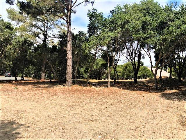 7830 Monterra Oaks Road (Lot 104), Monterey, CA 93940 (MLS #ML81800947) :: Compass