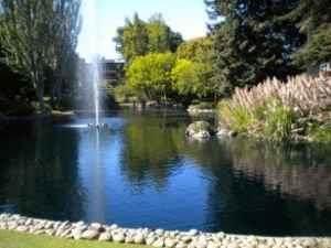 833 N Humboldt St 212, San Mateo, CA 94401 (#ML81806378) :: Robert Balina | Synergize Realty