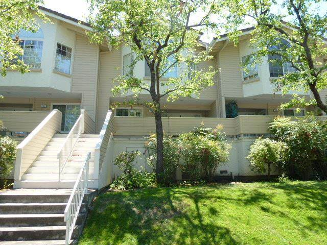 703 Hibiscus Pl, San Jose, CA 95117 (#ML81811616) :: Live Play Silicon Valley