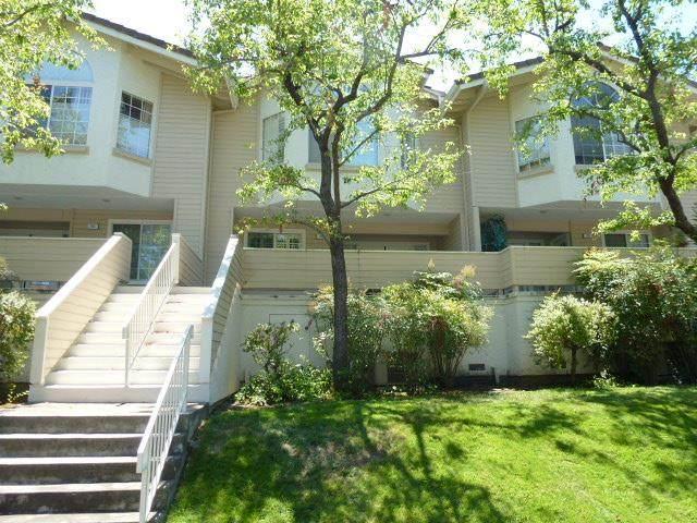 703 Hibiscus Pl, San Jose, CA 95117 (#ML81811616) :: Real Estate Experts