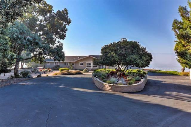 3949 Pleasant Hollow Ln, San Jose, CA 95148 (#ML81821895) :: The Kulda Real Estate Group