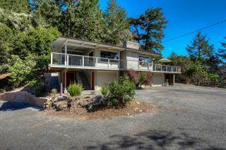 4399 Pescadero Creek Rd, Pescadero, CA 94060 (#ML81822381) :: The Sean Cooper Real Estate Group