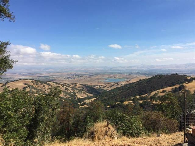 0 San Juan Canyon Rd, San Juan Bautista, CA 95045 (#ML81822387) :: Olga Golovko