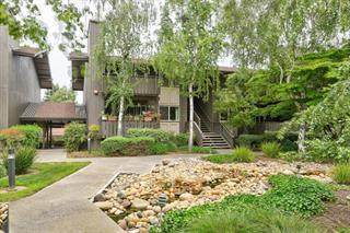50 E Middlefield Rd 38, Mountain View, CA 94043 (#ML81825903) :: The Sean Cooper Real Estate Group