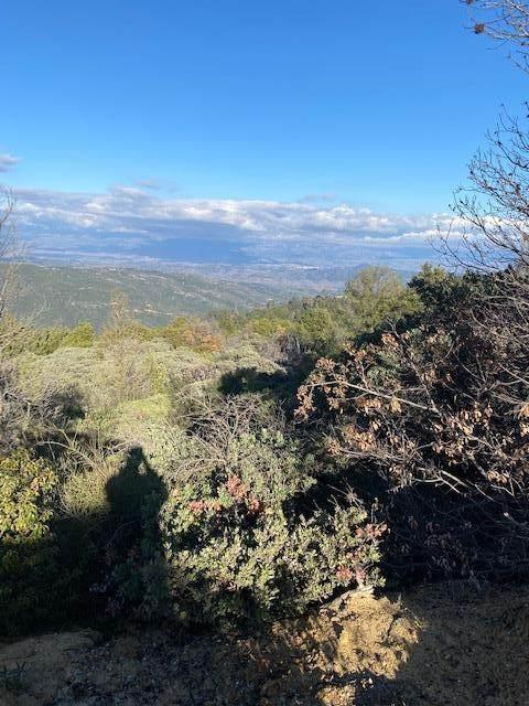 36000 Mt Madonna Rd, Morgan Hill, CA 95037 (#ML81827775) :: The Realty Society