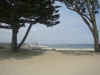 429 Cortes St, Monterey, CA 93940 (#ML81830807) :: Olga Golovko