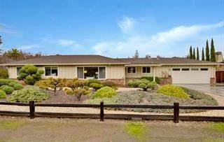 215 Hawthorne Ave, Los Altos, CA 94022 (#ML81832940) :: The Kulda Real Estate Group