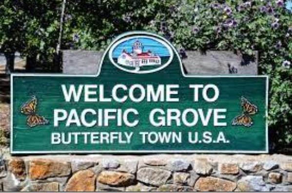 1035 Benito Ave, Pacific Grove, CA 93950 (#ML81837915) :: Intero Real Estate