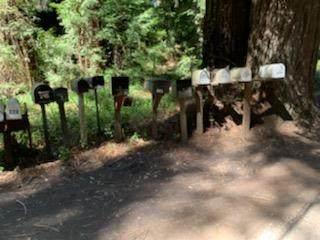 27 Wildwood, Boulder Creek, CA 95006 (#ML81839345) :: Intero Real Estate