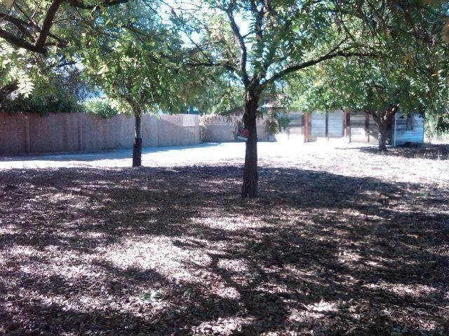 341 Lewis St, Gilroy, CA 95020 (#ML81840508) :: The Goss Real Estate Group, Keller Williams Bay Area Estates