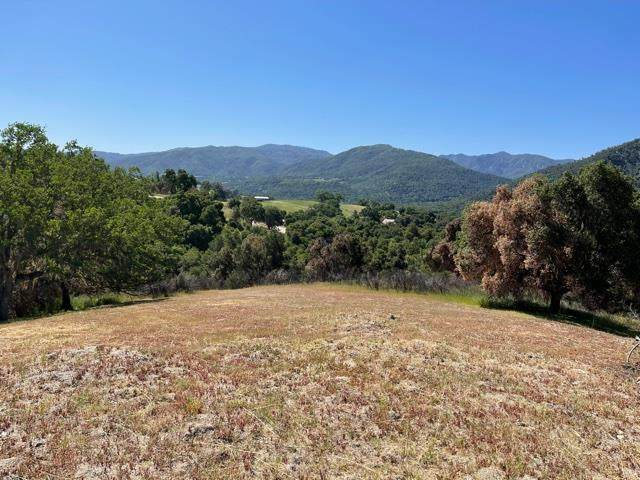 17464 Via Cielo, Carmel Valley, CA 93924 (#ML81842947) :: Schneider Estates