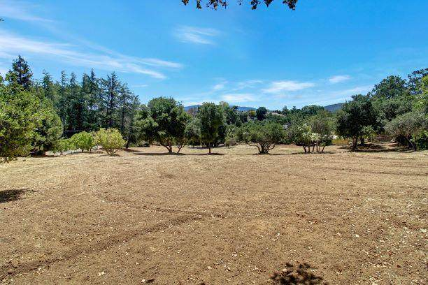 14171 Chester Ave, Saratoga, CA 95070 (#ML81845581) :: Real Estate Experts