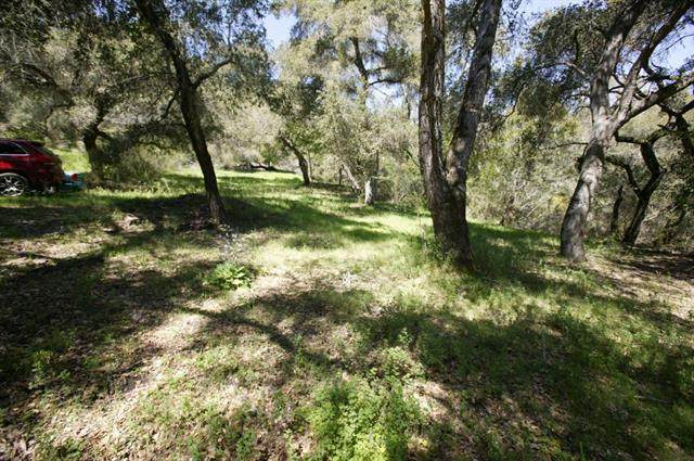 00 Jupiter Terrace, Santa Cruz, CA 95065 (#ML81847900) :: The Kulda Real Estate Group