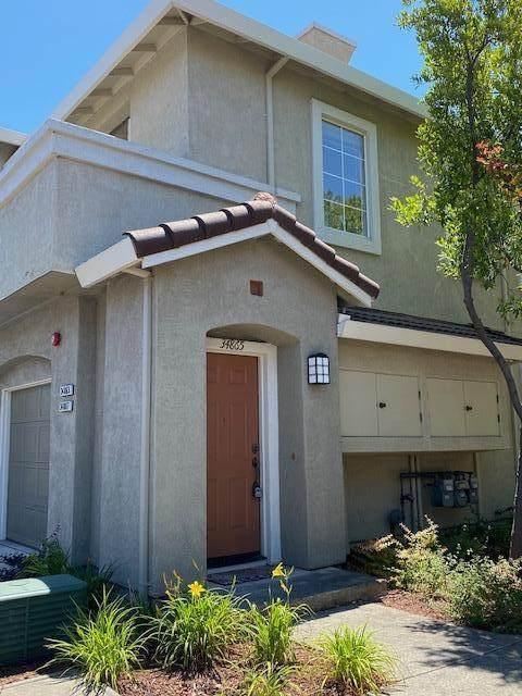 34865 Rumford Ter, Union City, CA 94587 (#ML81856307) :: The Goss Real Estate Group, Keller Williams Bay Area Estates