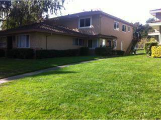 949 Gilchrist Dr 2, San Jose, CA 95133 (#ML81856871) :: The Sean Cooper Real Estate Group