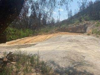 1875 Pine Flat, Santa Cruz, CA 95060 (#ML81858286) :: Schneider Estates