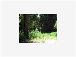 104 Mcpherson Ct, Boulder Creek, CA 95006 (#ML81863430) :: The Sean Cooper Real Estate Group