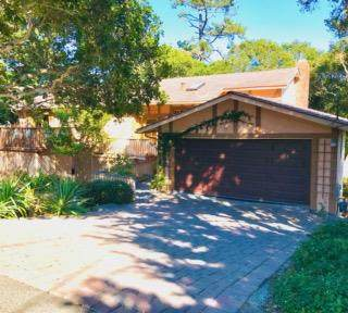 25597 Morse Dr, Carmel, CA 93923 (#ML81866161) :: The Sean Cooper Real Estate Group