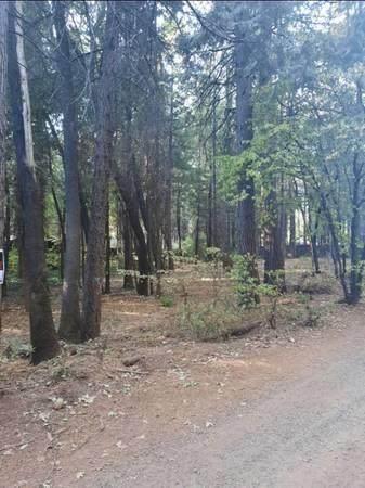 14507 Holmwood Dr, Magalia, CA 95954 (#ML81867998) :: The Kulda Real Estate Group