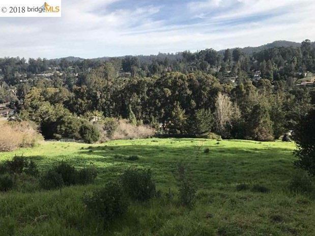 0 Monan Street, Oakland, CA 94605 (#EB40812069) :: Strock Real Estate