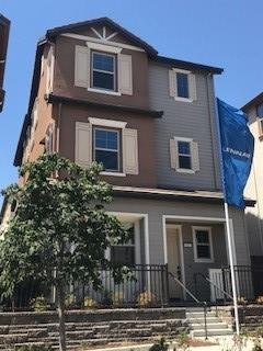 513 Sweet Bay Dr, Milpitas, CA 95035 (#ML81656851) :: The Goss Real Estate Group, Keller Williams Bay Area Estates