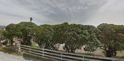 26970 Encinal Rd, Salinas, CA 93908 (#ML81668996) :: The Dale Warfel Real Estate Network