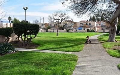 2133 Luz Ave, San Jose, CA 95116 (#ML81689262) :: Myrick Estates Team at Keller Williams
