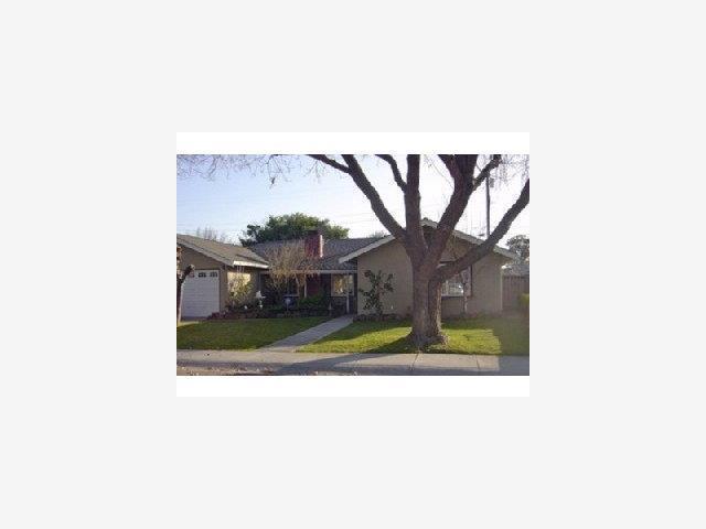 2344 Arguello Pl, Santa Clara, CA 95050 (#ML81689504) :: Intero Real Estate
